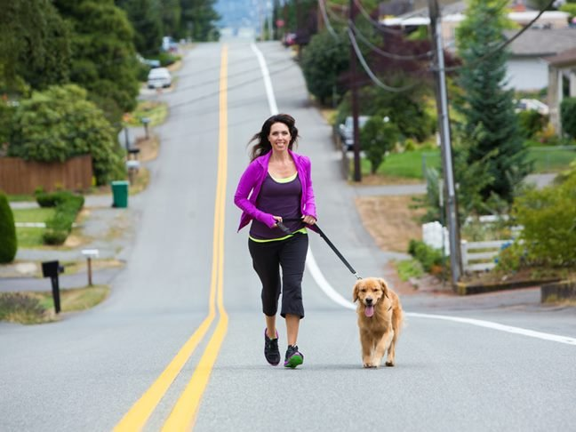 Pets and Fitness