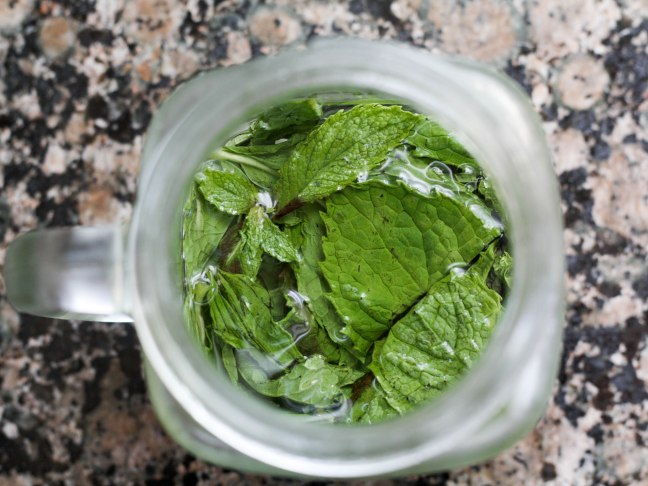 disneyland-mint-julep-recipe-03