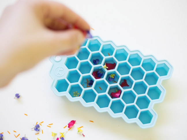 sprinkling-flower-petals-into-ice-cube-tray