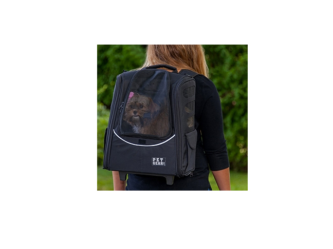 all_in_one_dog_carrier_for_travel