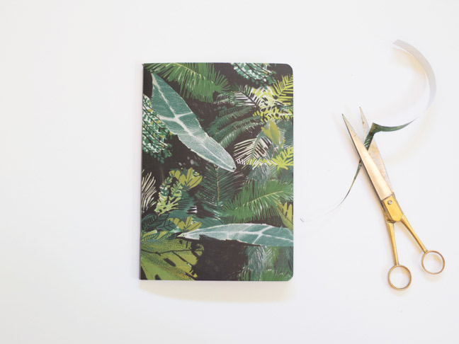 notebook-palm-paper-gold-scissors