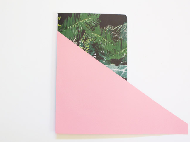 notebook-palm-paper-pink-paper