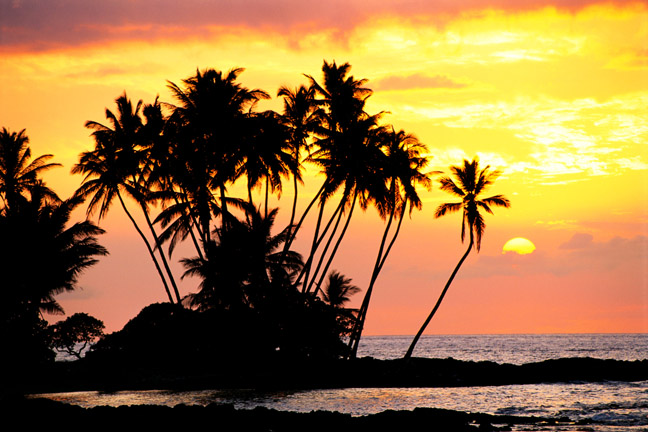 Hawaii, Big Island, Wailua bay, view of palm trees at sunset, calm ocean waters