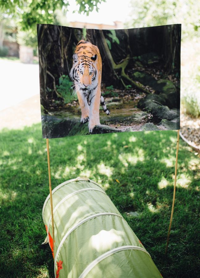 tiger-jungle-diy-obstacle-course