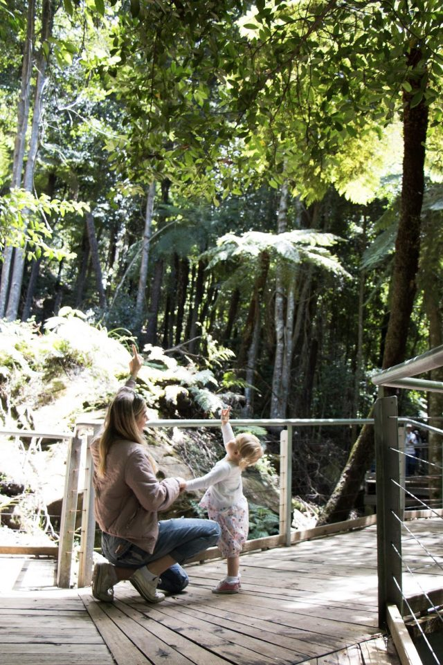 A Family Day Out At Scenic World