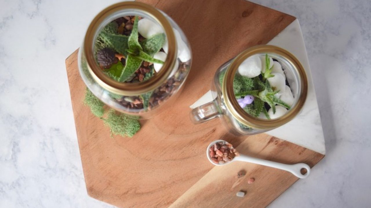 Need A Little Green Indoors This Diy Mason Jar Terrarium Is So Easy To Make