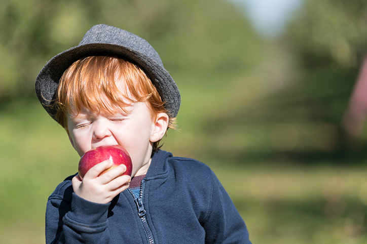 20 Things That Will Happen When You Take Your Kids Apple Picking