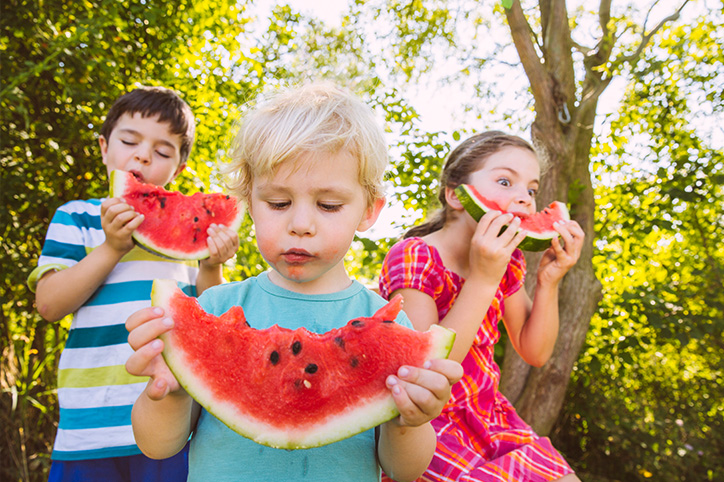7 Picnic Essentials For The Perfect Family Outing