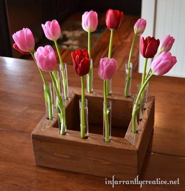 Tulip Box Display