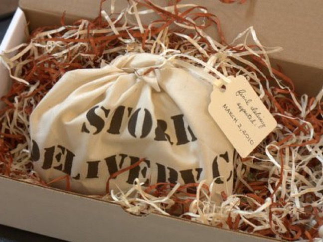 Stork Delivery Co.
