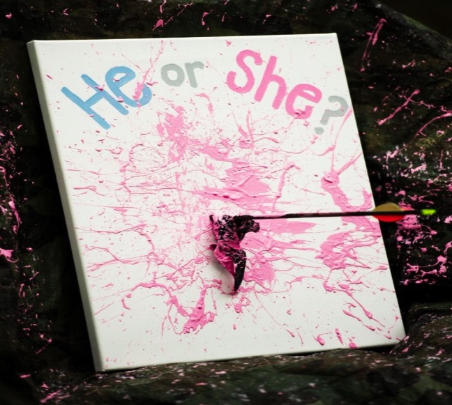 Bow and Arrow Gender Reveal