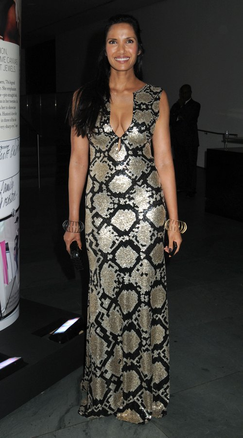 Padma Lakshmi, silver and black gown, silver and black dress